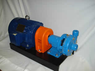 Salt Water Transfer Pump Package with Motor and Couplings